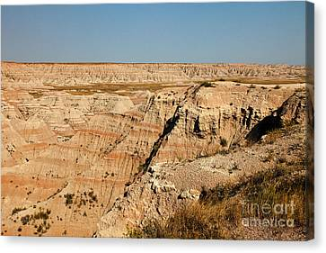 Fossil Exhibit Trail Badlands National Park Canvas Print