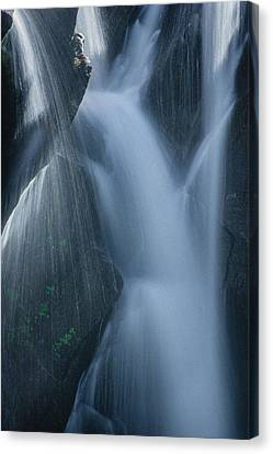 Fountain Nature Canvas Print by Gene Garnace