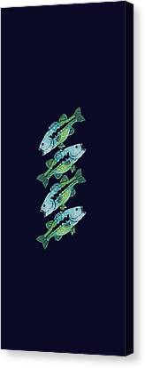 Four Bass Canvas Print by Jenny Armitage
