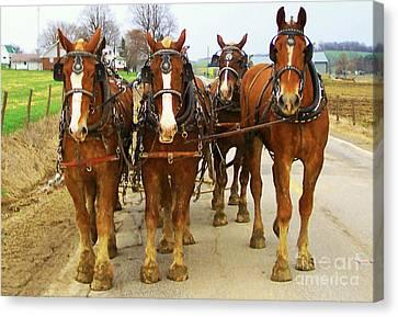 Four Horse Power Canvas Print