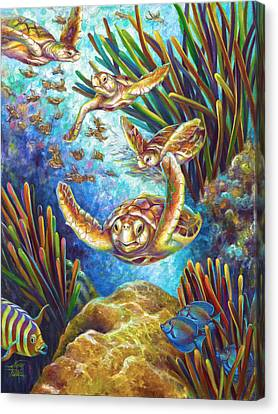 Four Loggerhead Turtles Canvas Print by Nancy Tilles
