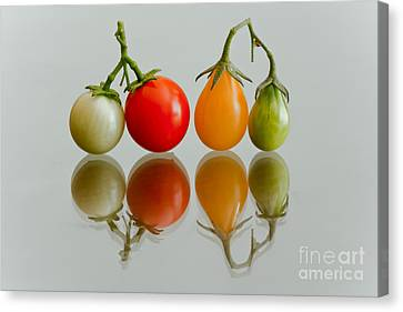 Canvas Print featuring the photograph Four Of The Kinds by Jonathan Nguyen
