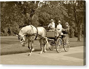 Four Wheel Cart Family Canvas Print by Wayne Sheeler