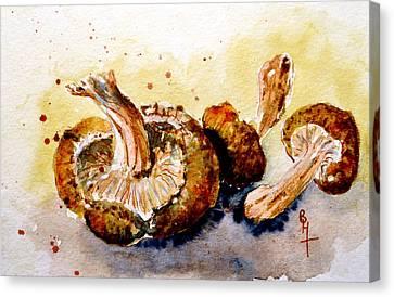 Fournissent Les Bois Canvas Print