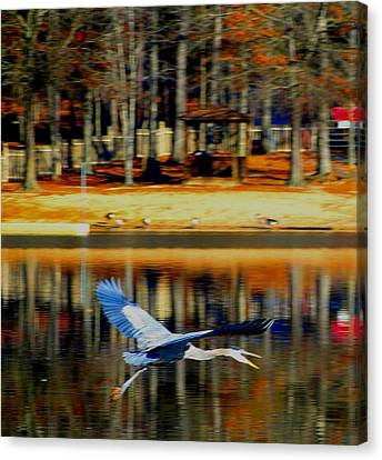Fowl In Flight Canvas Print by Cindy Croal