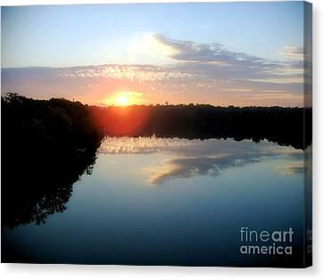 Fox River Canvas Print by Michael Creamer