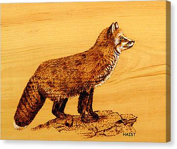 Canvas Print featuring the pyrography FOX by Ron Haist