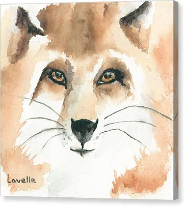 Fox Study 2 Canvas Print by Kimberly Lavelle