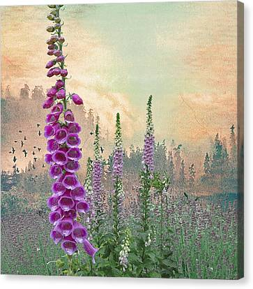 Foxglove In Washington State Canvas Print by Jeff Burgess