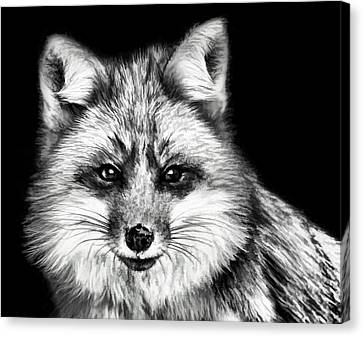 Foxtrot Canvas Print by Steven Richardson