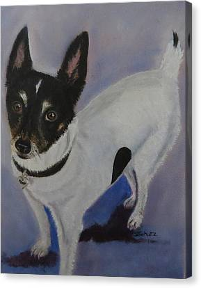 Canvas Print featuring the painting Foxy by Sharon Schultz
