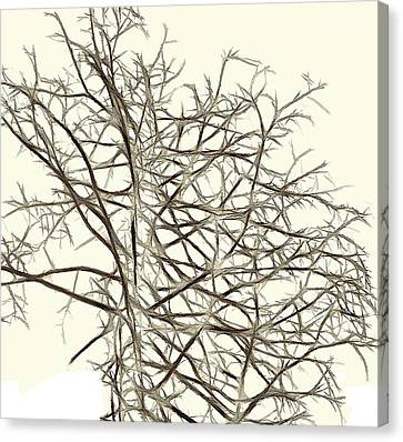 Fractal Ghost Tree - Inverted Canvas Print by Steve Ohlsen