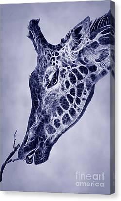 Giraffe Abstract Canvas Print - Fractal Giraffe Duotone by John Edwards