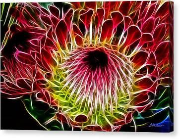 Fractal Protea Canvas Print by Michael Durst