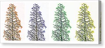 Fractal Seasons - Tetraptych Canvas Print by Steve Ohlsen