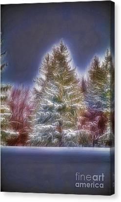 Fractalius Winter Pines Canvas Print