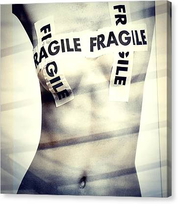 Fragile Canvas Print by Stefania Montolli