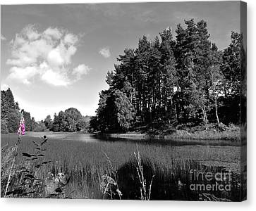 Fragments Of Color Loch Canvas Print by Julian  Walters