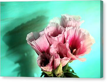 This One Canvas Print by Paulette Maffucci