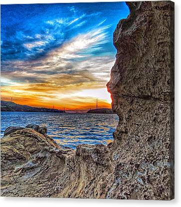 Framed By Nature Canvas Print by Brian Maloney