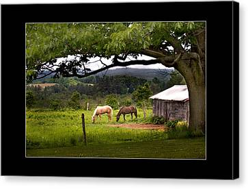 Framed Canvas Print by Don Powers