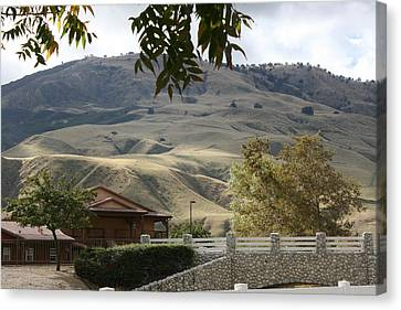 Canvas Print - Framed Foothill by Marsha Ingrao