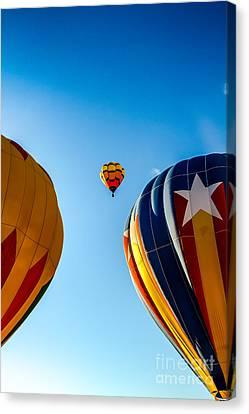 Framed Hot Air Balloon Canvas Print by Robert Bales