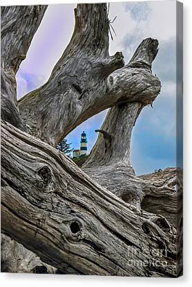Framed Lighthouse Canvas Print by Robert Bales