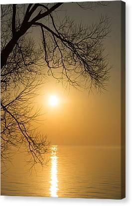 Framing The Golden Sun Canvas Print by Georgia Mizuleva