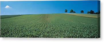 France, Alsace Canvas Print by Panoramic Images