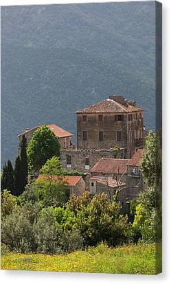 France, Corsica, La Alta Rocca Canvas Print
