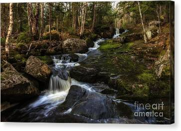 Franey Falls Canvas Print