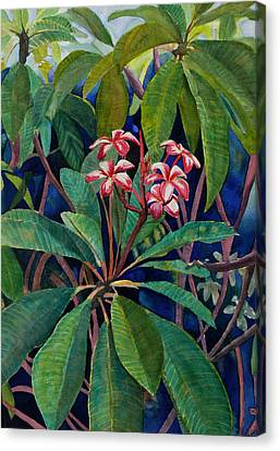 Frangipani Canvas Print by Susan Duda
