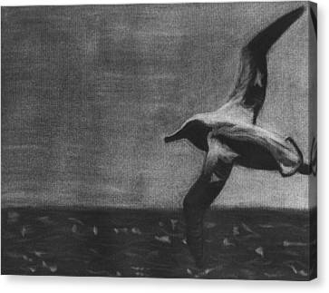 Free As A Bird Canvas Print by Tina Boyer