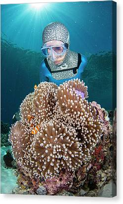 Free Diver With Anemonefish Canvas Print