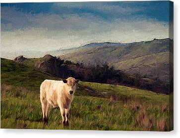 Free Ranger Canvas Print by John K Woodruff