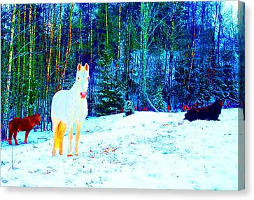 The Blessed Moment Of The Free Spirits Canvas Print by Hilde Widerberg