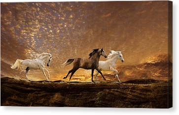 Freed Spirits Canvas Print by Melinda Hughes-Berland