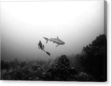 Apnea Canvas Print - Cara A Cara by One ocean One breath