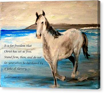 Freedom Canvas Print by Amanda Dinan