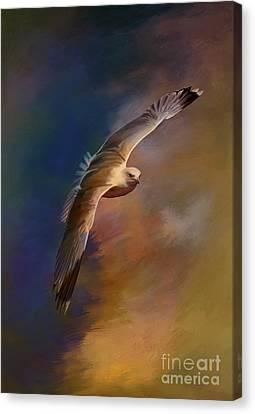 Freedom....  Canvas Print by Andrzej Szczerski
