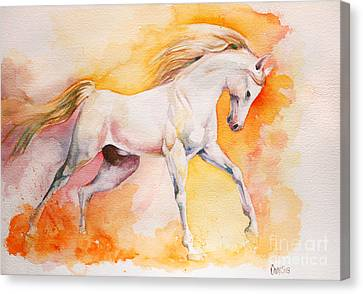 Freedom Canvas Print by Tamer and Cindy Elsharouni