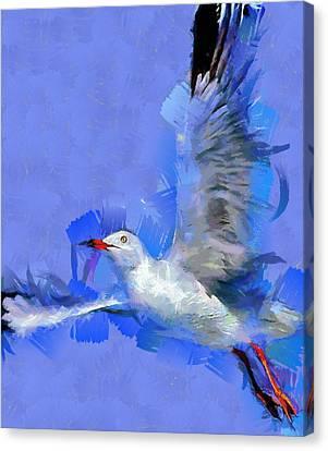 Freedom Canvas Print by Georgi Dimitrov