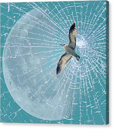 Freedom Canvas Print by Heike Hultsch