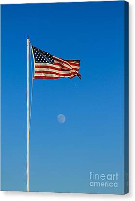 Freedom Canvas Print by Robert Bales