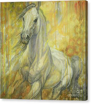 Freedom Canvas Print by Silvana Gabudean Dobre