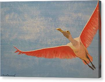 Freedom Canvas Print by Tim Townsend
