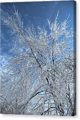 Canvas Print featuring the photograph Freezing Rain ... by Juergen Weiss