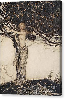 Freia The Fair One Illustration From The Rhinegold And The Valkyrie Canvas Print by Arthur Rackham