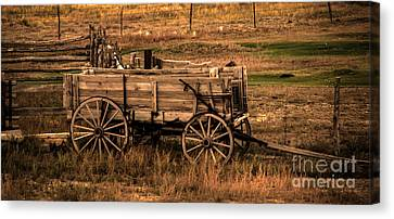 Freight Wagon Canvas Print by Robert Bales